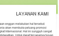 fitur website instant indocompany: layanan
